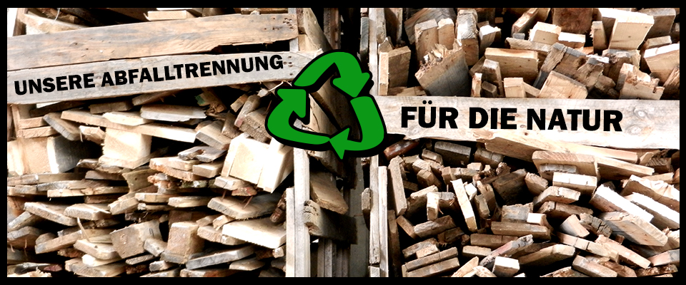 Stabenow-paletten-recycling-clean
